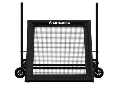 All Ball Pro® – The Varsity