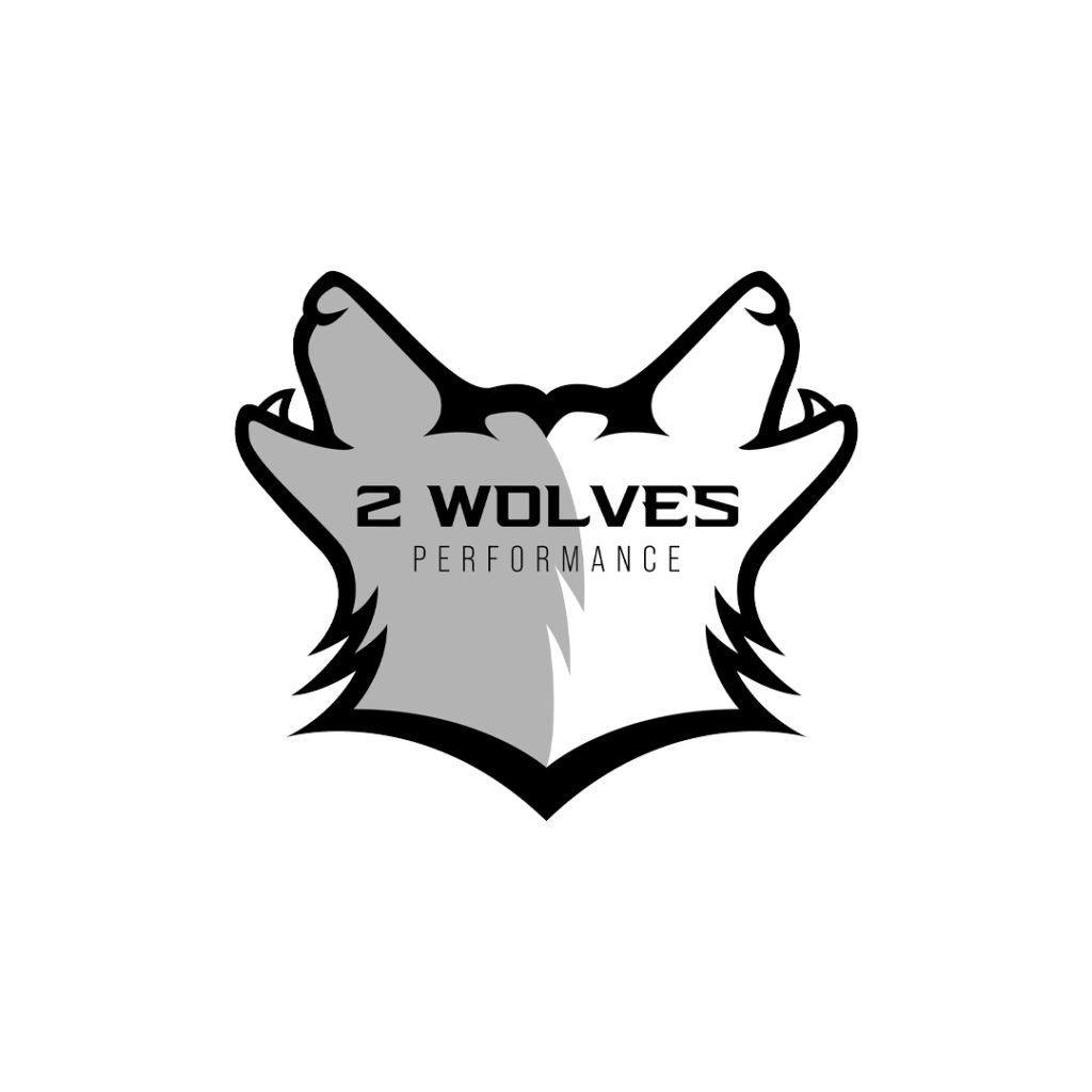 2 wolves lacrosse